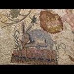 http://www.comite-des-villes-jumelees-saint-cyr-sur-loire.fr/sites/default/files/imagecache/big/jjr/09-09-22_Paphos_Mosaiques_maison_Dionysos_025.png